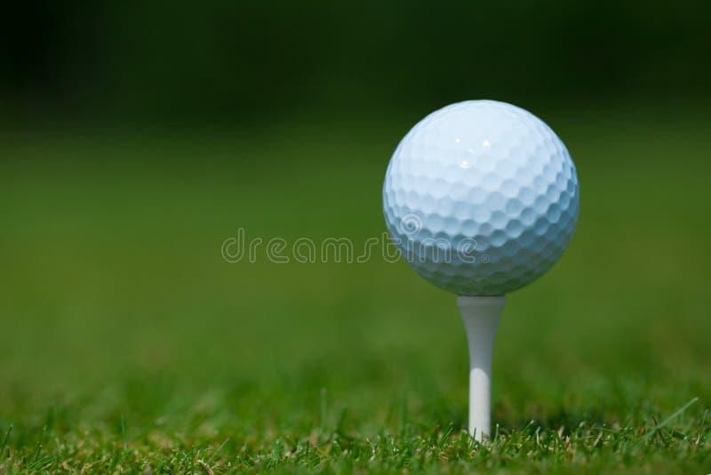 在一个白色发球区域的高尔夫球与绿草在背景中 库存照片