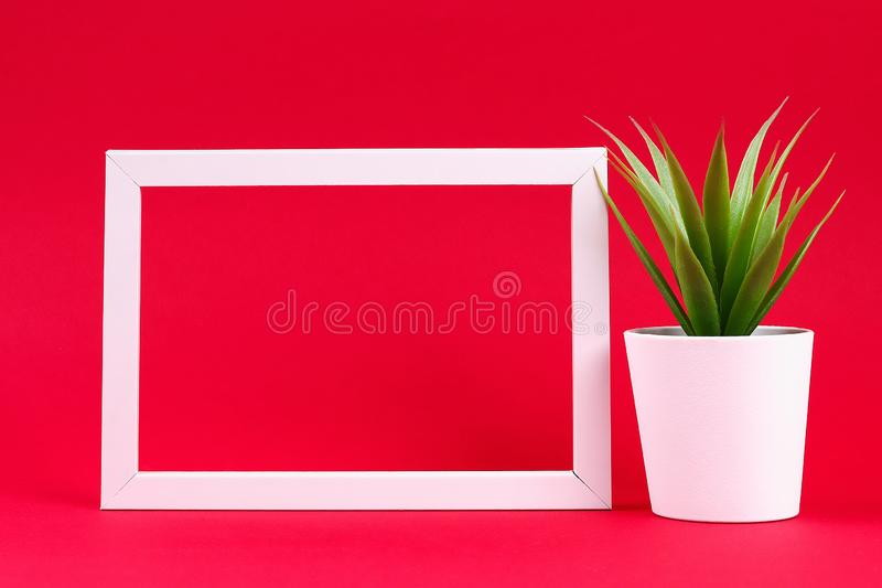 在一个白色小罐的人为绿草在红色伯根地背景的白色框架 库存照片