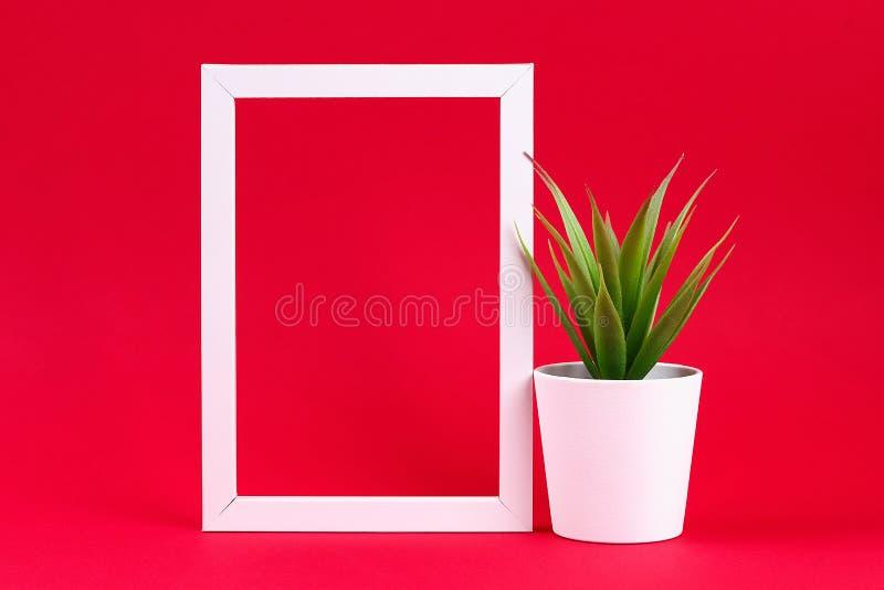 在一个白色小罐的人为绿草在红色伯根地背景的白色框架 免版税库存图片