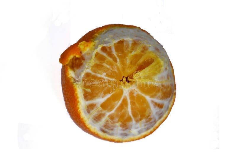 在一个白色背景蜜桔桔子的成熟普通话特写镜头 免版税库存图片