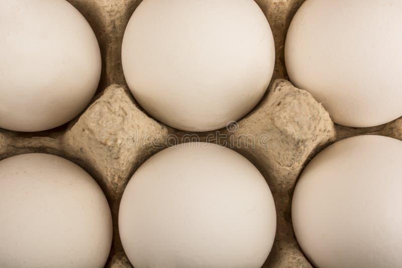 在一个盘子的六个鸡蛋十个蛋孤立的 免版税库存图片