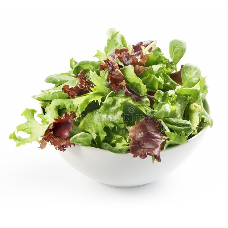 在一个碗的新鲜的凉拌生菜在白色背景 免版税图库摄影