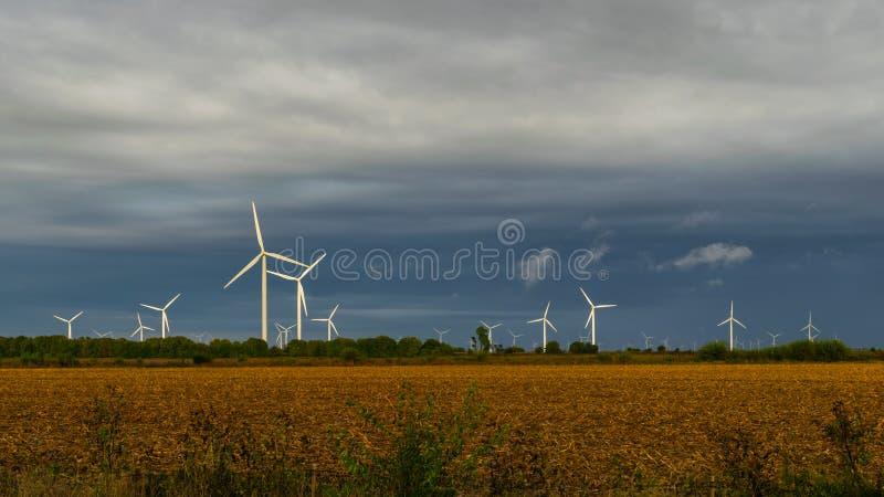 在一个秋天晚上期间,一个开放领域的风轮机农场 图库摄影