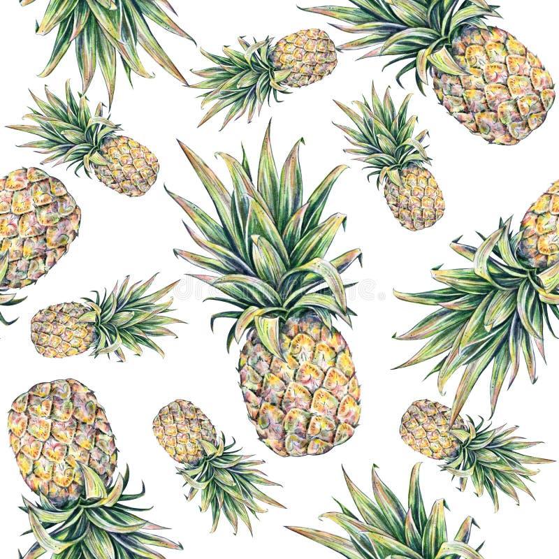 在一个空白背景的菠萝 水彩五颜六色的例证 热带的果子 无缝的模式 向量例证