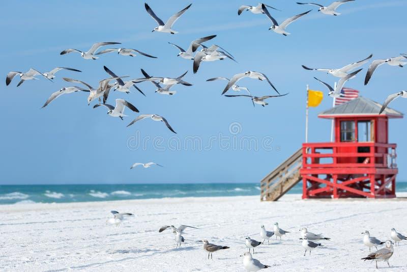 在一个空的早晨海滩的红色木救生员小屋 免版税库存照片