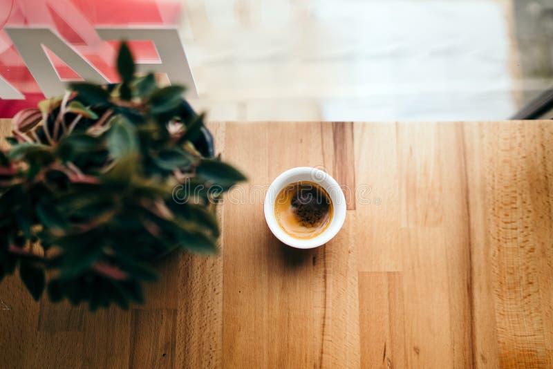 在一个窗口和一朵花旁边的咖啡在咖啡馆商店 早晨 免版税库存照片