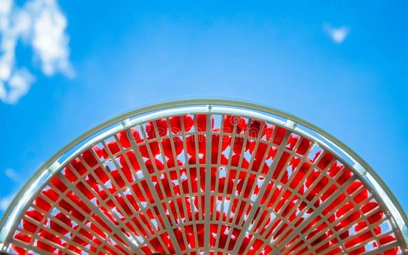 在一个筛子的新鲜的红色樱桃反对蓝天,烘干在烘干机的莓果 免版税库存图片
