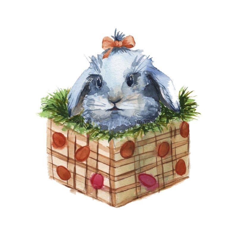 在一个箱子的复活节兔子有草的 查出 水彩 向量例证