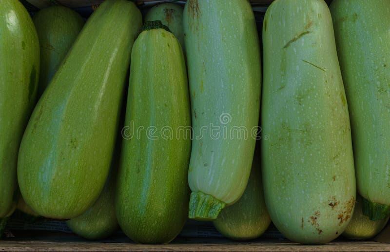 在一个箱子的新鲜的年轻夏南瓜在市场上 免版税库存图片