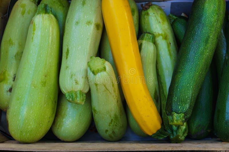 在一个箱子的新鲜的年轻夏南瓜在市场上 免版税图库摄影