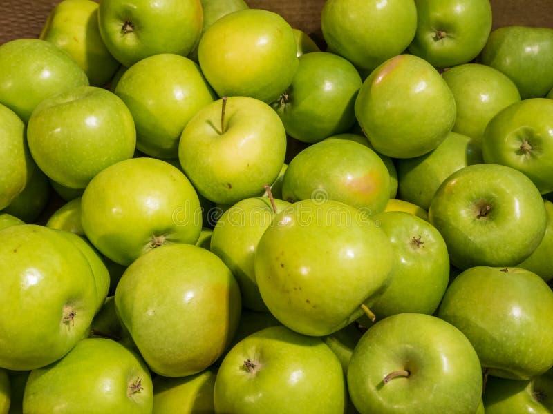 在一个箱子的许多绿色美味苹果在商店 库存图片
