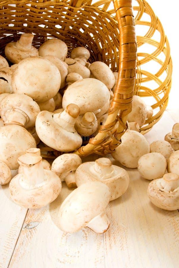在一个篮子的蘑菇在桌上 免版税库存照片