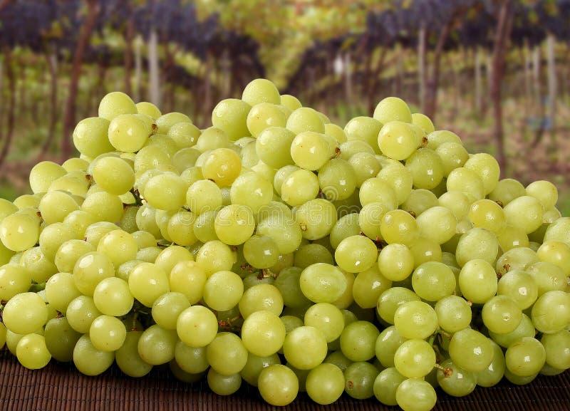 在一个篮子的绿色葡萄在木表面. 复制, 葡萄.