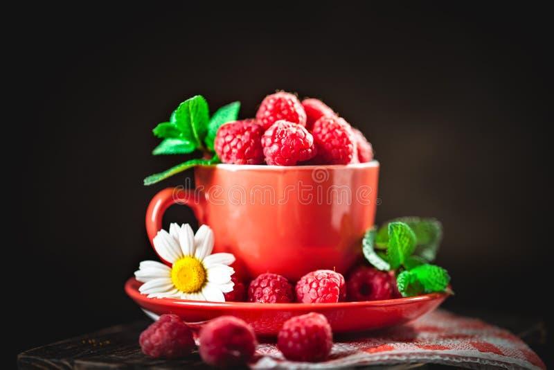 在一个红色杯子的莓有春黄菊和叶子的在黑暗的背景 夏天和健康食品概念 背景与 免版税图库摄影