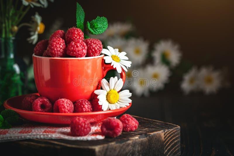 在一个红色杯子的莓有春黄菊和叶子的在黑暗的背景 夏天和健康食品概念 背景与 库存图片