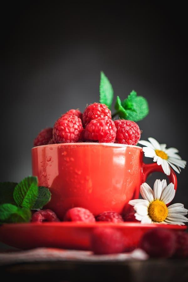 在一个红色杯子的莓有春黄菊和叶子的在黑暗的背景 夏天和健康食品概念 r 库存图片