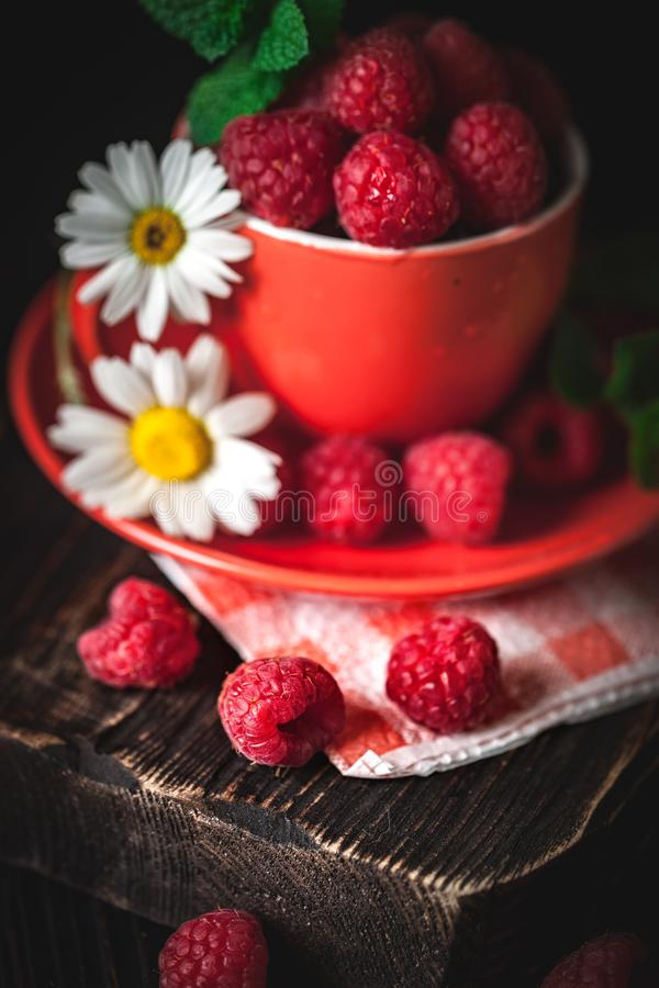 在一个红色杯子的莓有春黄菊和叶子的在黑暗的背景 夏天和健康食品概念 r 库存照片