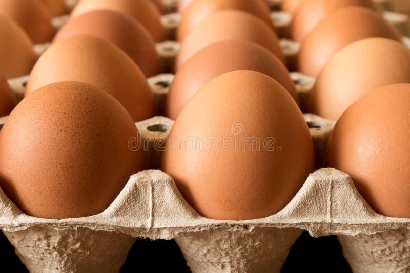 在一个纸板箱的鸡蛋在一张木桌上 关闭 宏指令 库存照片