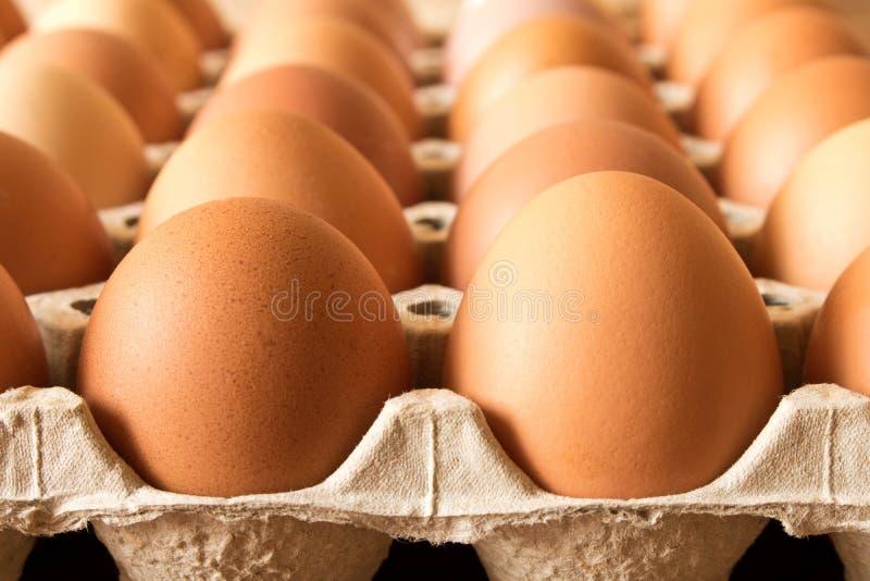 在一个纸板箱的鸡蛋在一张木桌上 关闭 宏指令 免版税库存图片