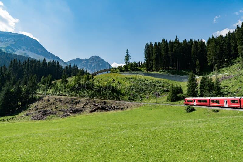 在一个绿色夏天山风景的红色Rhaetian铁路火车在瑞士阿尔卑斯山脉 免版税图库摄影