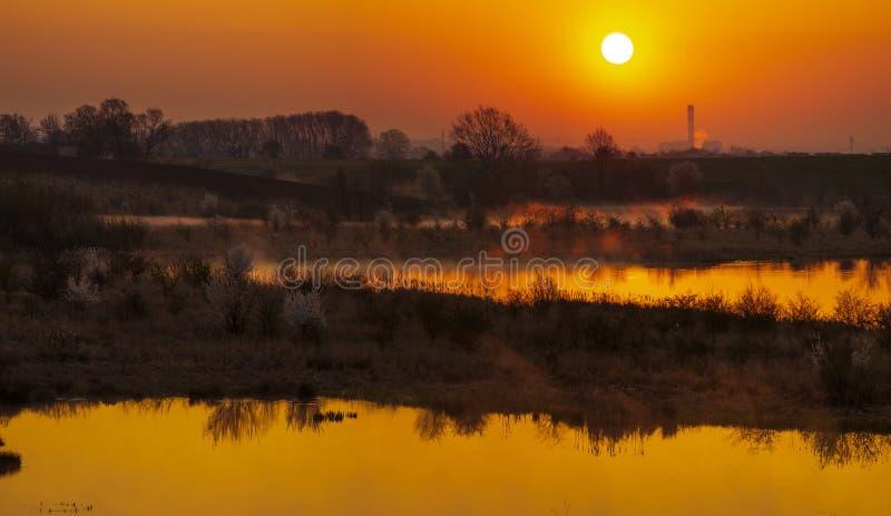 在一个绿色春天领域的日出由湖 库存照片