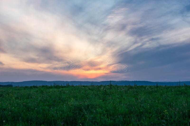 在一个绿色领域的美好的日落 免版税库存图片