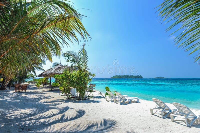 在一个美丽的热带海滩的躺椅在马尔代夫 在沙子的海滩睡椅在海、蓝天和天际附近 热带视图 免版税库存照片