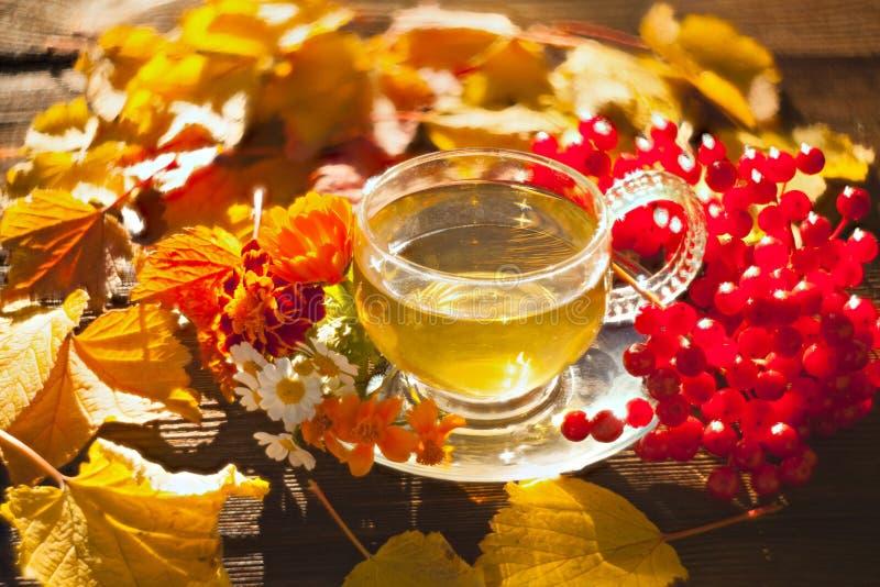 在一个美丽的玻璃碗的可口秋天茶在桌上 免版税库存照片