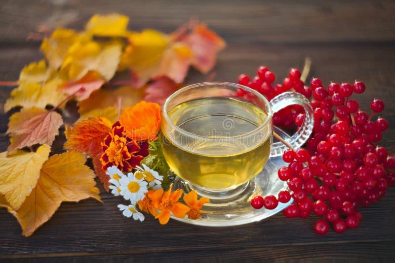 在一个美丽的玻璃碗的可口秋天茶在桌上 免版税图库摄影