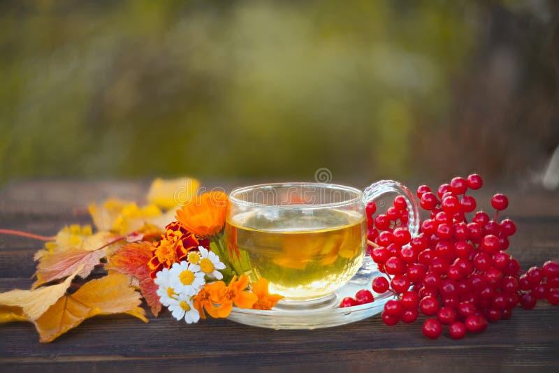 在一个美丽的玻璃碗的可口秋天茶在桌上 免版税库存图片