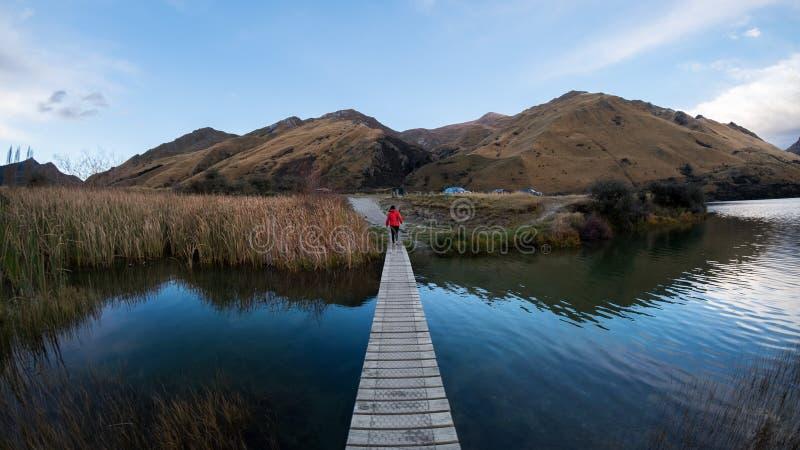 在一个美丽的蓝色湖附近的自然步行在昆斯敦,新西兰 库存图片