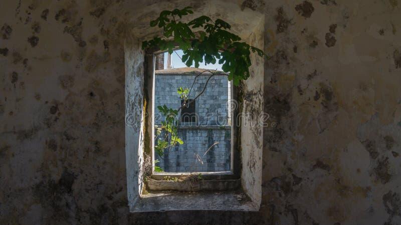 在一个老堡垒的一个窗口 免版税图库摄影