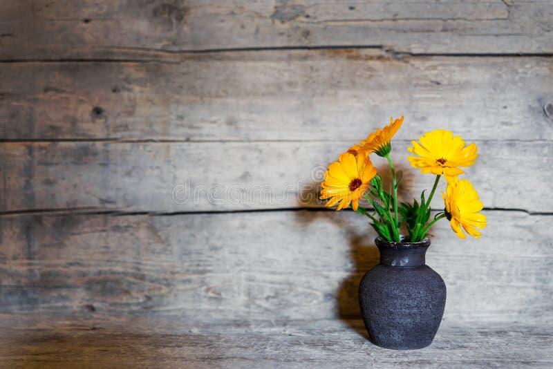 在一个老花瓶的黄色大丁草在木背景 免版税库存照片