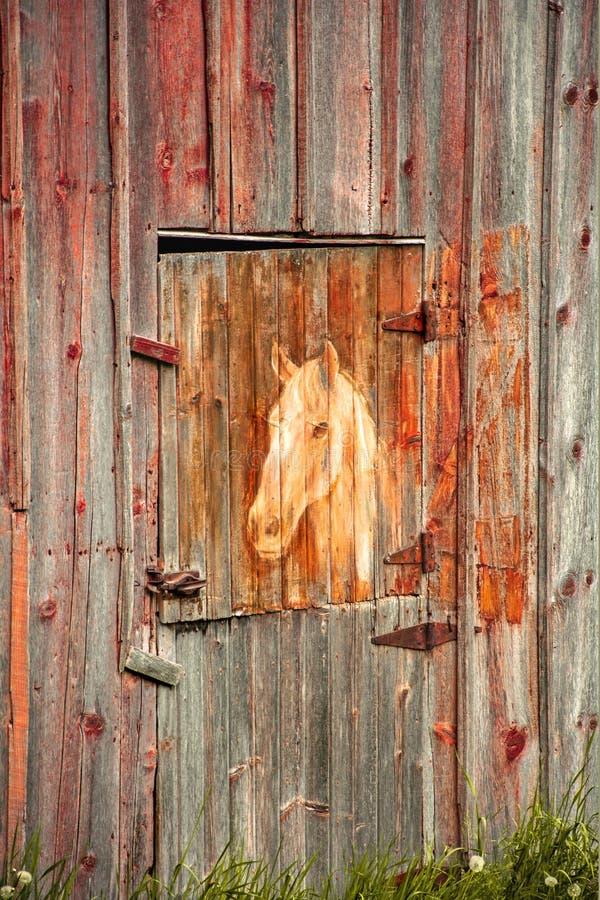 在一个老谷仓的马绘画 图库摄影