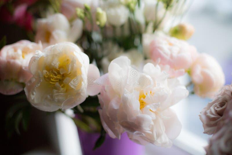 在一个花瓶的美丽的白色牡丹花在窗口 免版税库存照片
