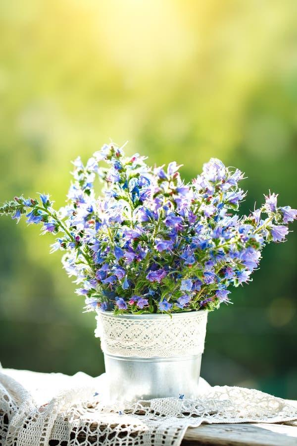 在一个花瓶的美丽的紫色花在一个夏天从事园艺 仍然生活夏天 库存图片