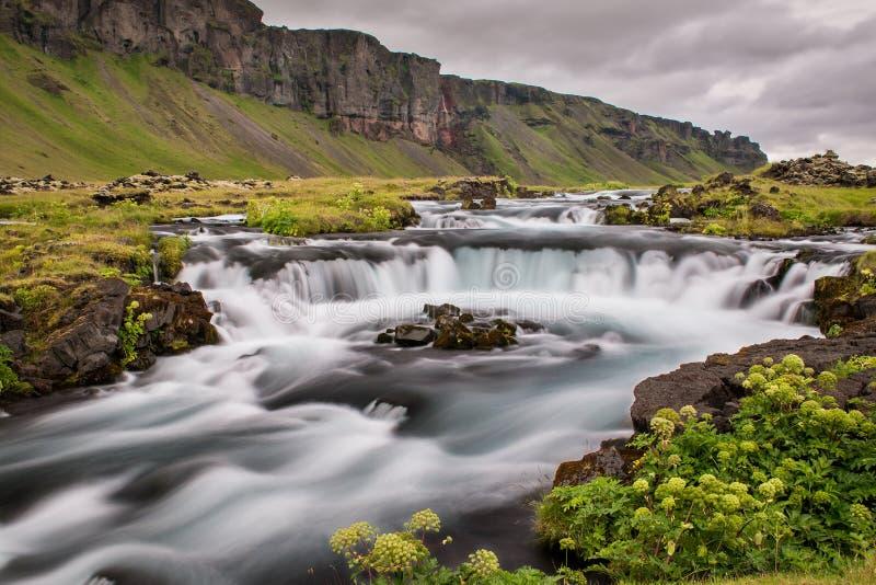 在一个草甸中间的洪流在冰岛 免版税图库摄影
