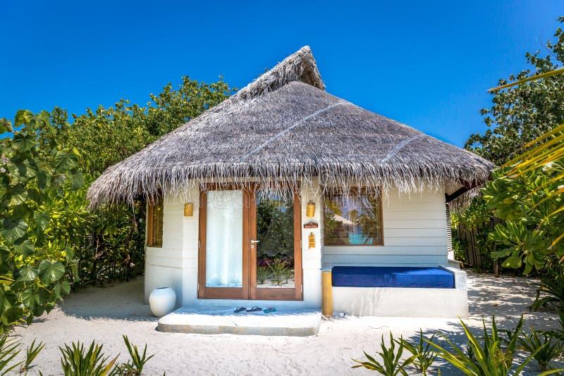 在一个荒岛中间完善豪华旅馆室在马尔代夫 包围屋子,蓝天,美好的情景的树 库存照片