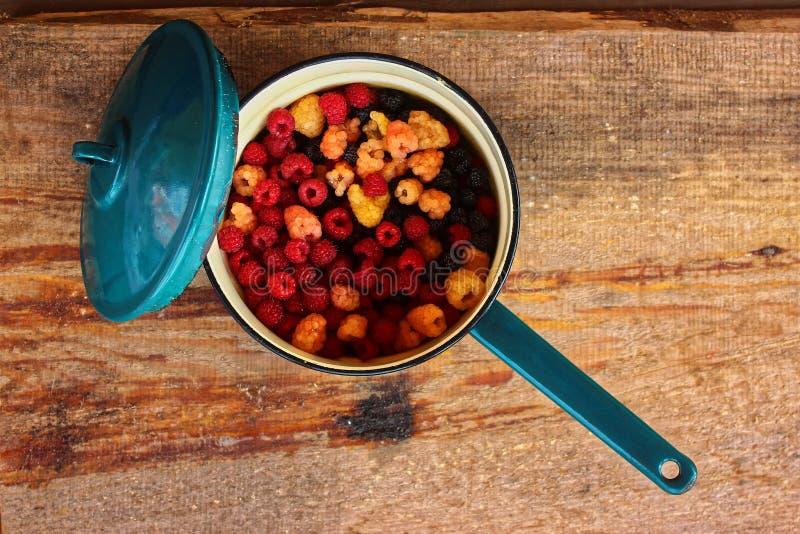 在一个蓝色砂锅的五颜六色的莓 库存图片