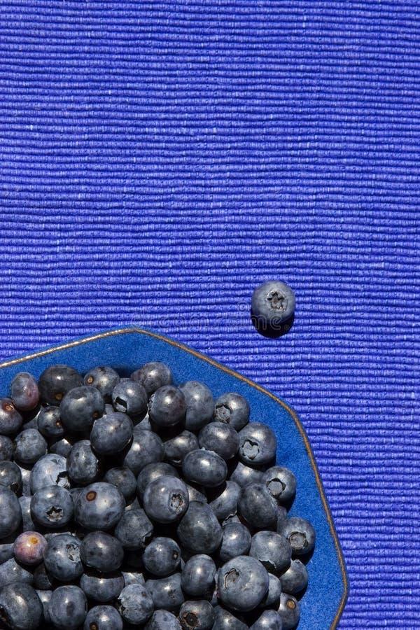 在一个蓝色碗的蓝莓 库存图片