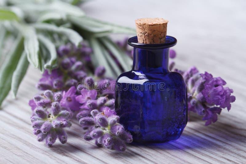 在一个蓝色水平的玻璃瓶和的花的熏衣草油 库存照片