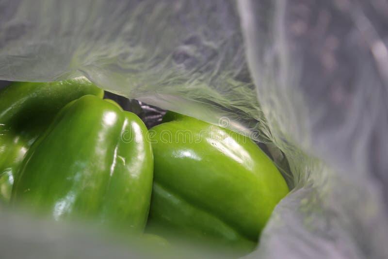 在一个被弄脏的食品杂货袋-新鲜的青椒里面 库存图片