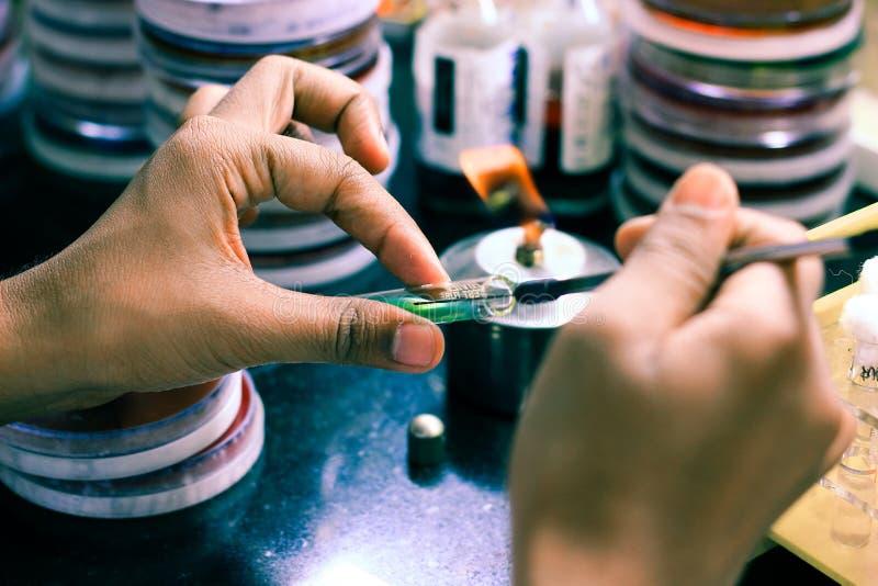 在一个试管琼脂培养基的细菌接种使用由科学家化验员的接种圈在微生物学里劳动 免版税库存照片