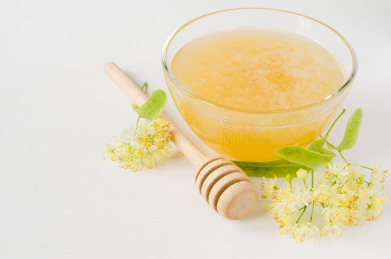 在一个透明碗的自然菩提树蜂蜜和菩提树在白色木背景开花 库存图片