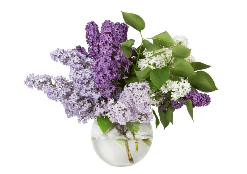 在一个透明花瓶的淡紫色花束 库存图片