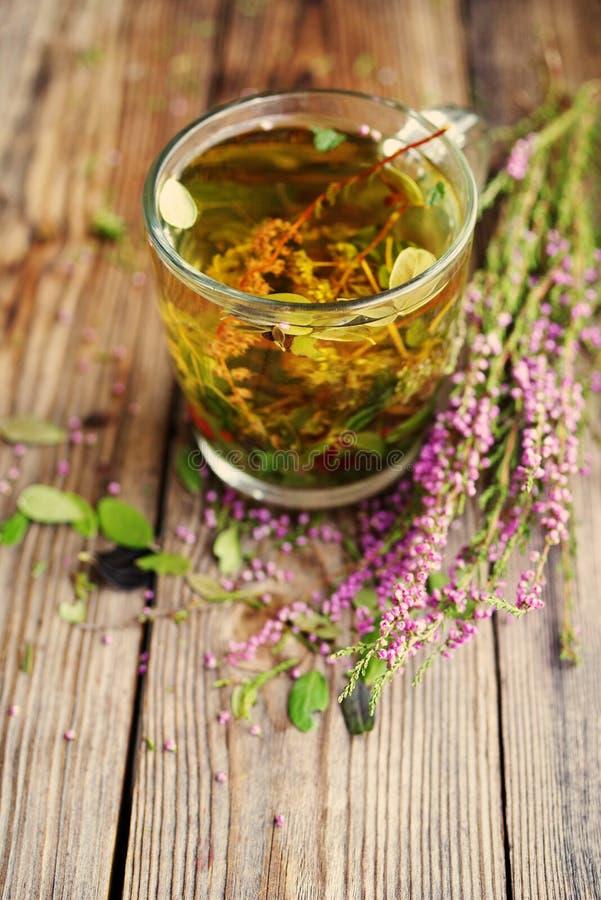 在一个透明玻璃杯子和森林草本的清凉茶 库存图片