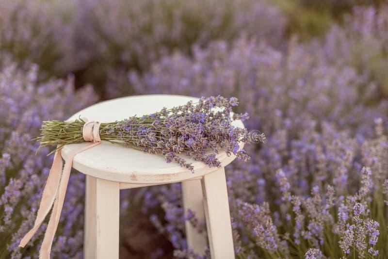 在一个长木凳的淡紫色花束在levender归档了日落 免版税库存照片