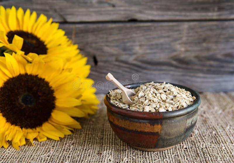 在一个陶瓷碗的燕麦 免版税图库摄影