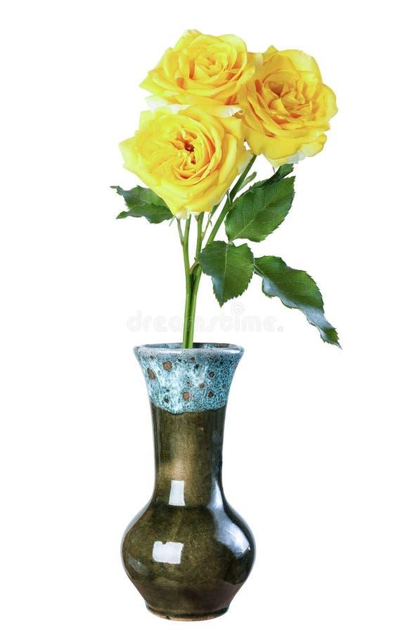 在一个陶瓷花瓶,在白色背景的孤立, c的黄色玫瑰 免版税库存照片