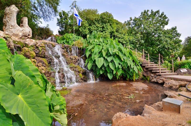 在一个集居区的绿洲在以色列 库存图片